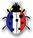 Ladybird Bug Design With France French Flag Motif External Vinyl Car Sticker 90x105mm